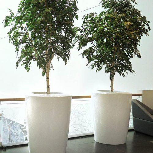 ASANA XXL Urban plant pot. Garden plant pot.